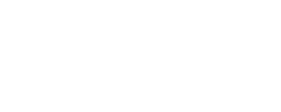 the blind factory logo